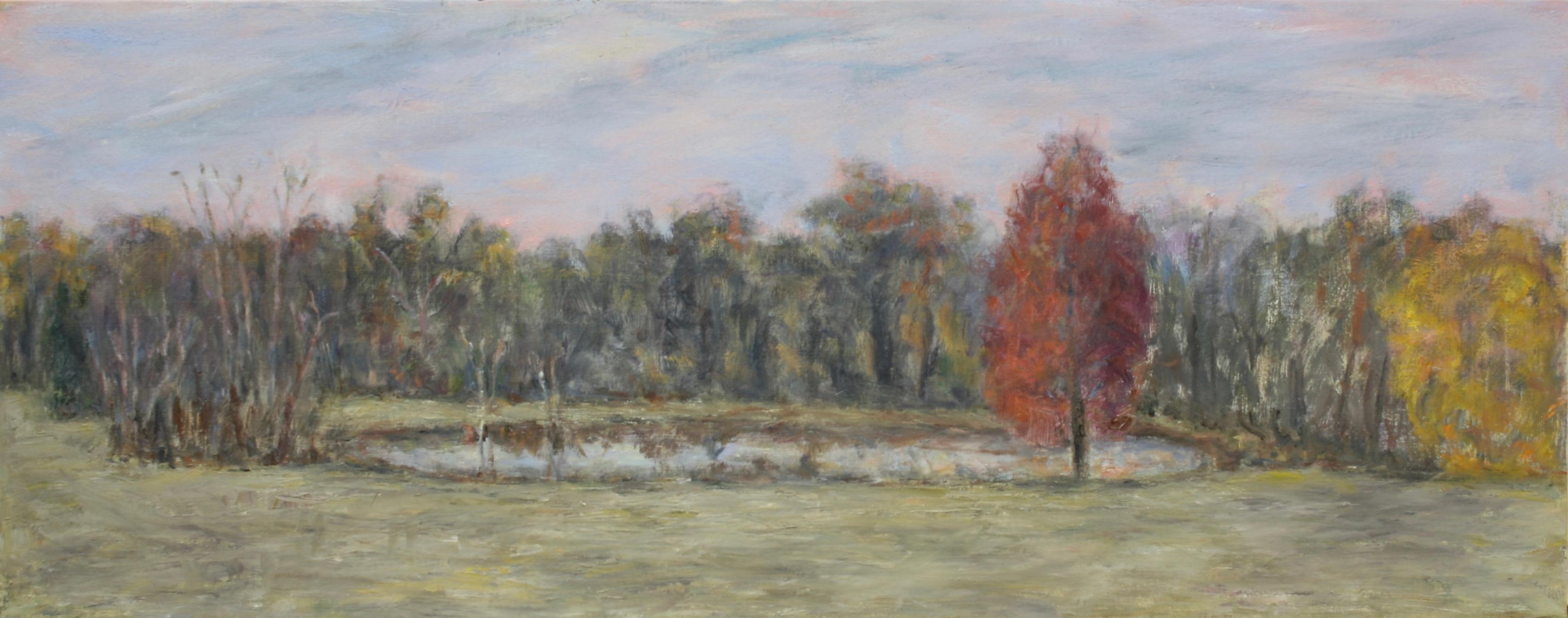November Pond