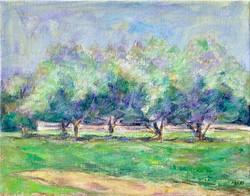 Appletrees