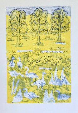 Geese with Sycamores