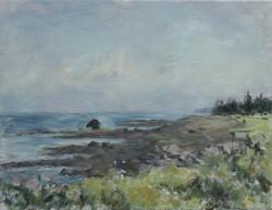 Horse Head, Beach Meadows