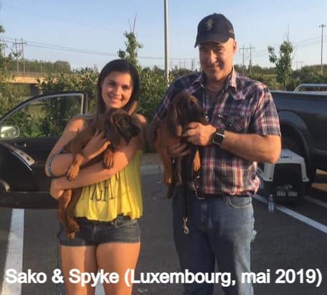 Sako et Spyke