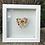 Thumbnail: Marigold Flower Power Pebble Heart in 20cm x 20cm Frame