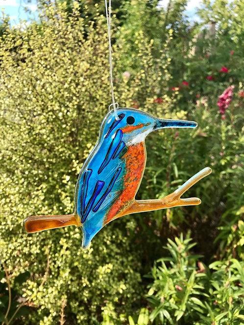 Hanging Kingfisher