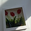 Thumbnail: Tulip Triket Dish (boxed)