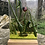 Thumbnail: Ladybird Woodblock Panel