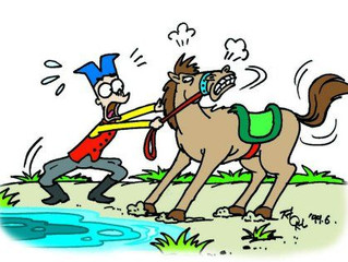 Leading A Horse To Water Won't Make Him Drink