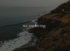 we are hiring an intern