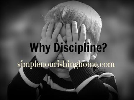 Why Discipline?
