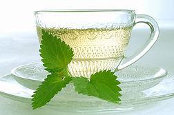 nettle tea trusTEA.jpg
