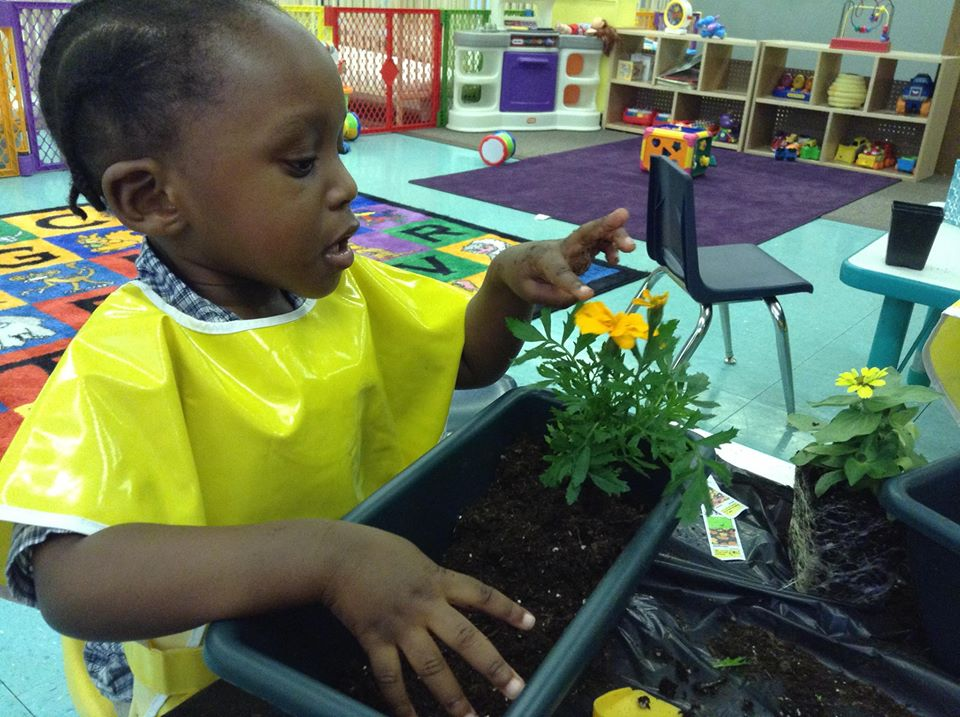 learning nature in childcare setting
