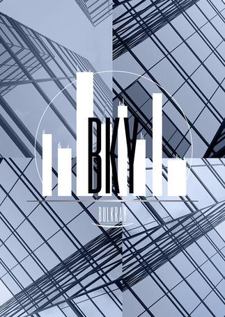 logo bulkray GOOD.jpg