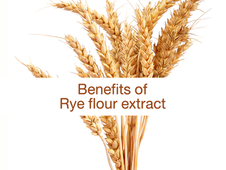 What is Rye? What are the benefits of Rye flour extract to our skin?