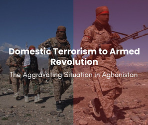 Domestic Terrorism to Armed Revolution