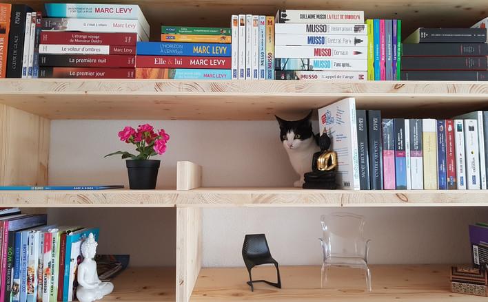 Bibliocat: étagères cachette