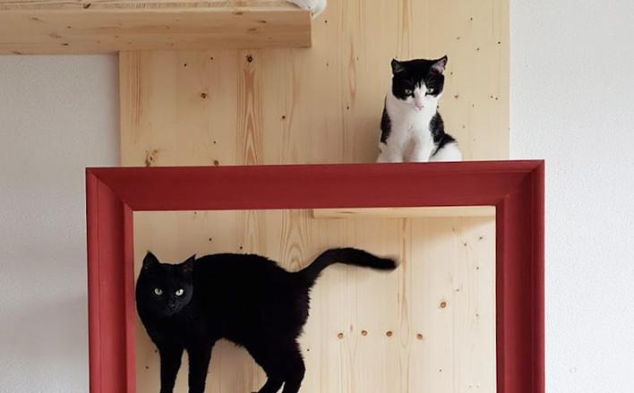 Tableau de Poudlard pour chat