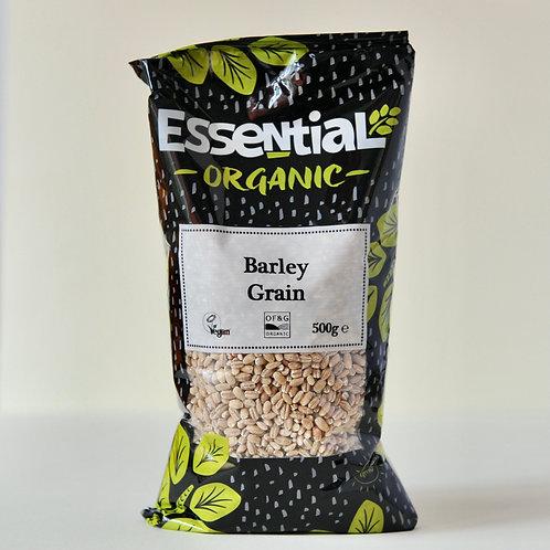 Barley Grain 500g