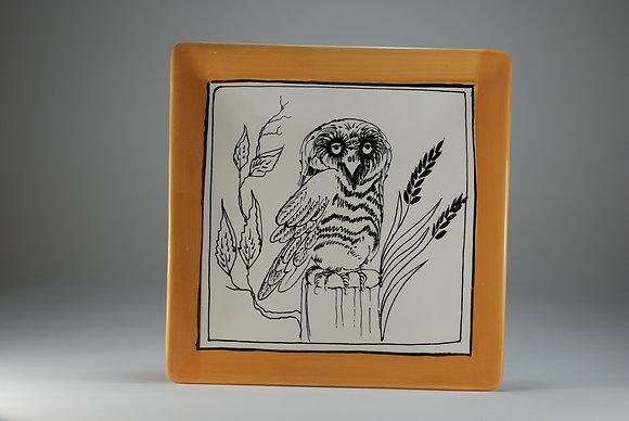 Barn Owl  8 inch Square