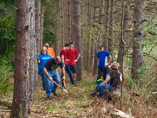 Cleaning Dog Trails and Planting Trees