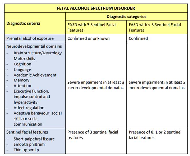 Manitoba's Therapeutic Jurisprudence Salvo: Fetal Alcohol