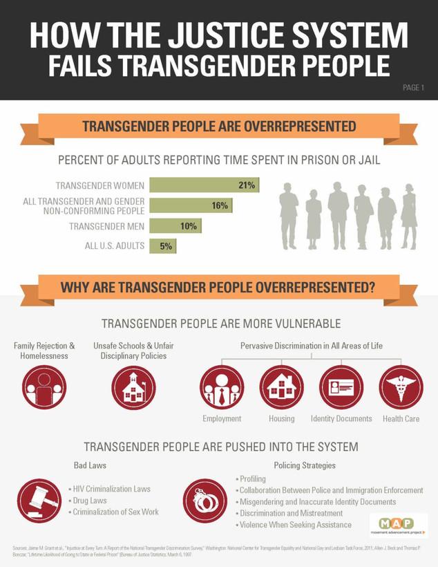 Regulating Gender: Transgender People's Experiences in the Criminal Justice System
