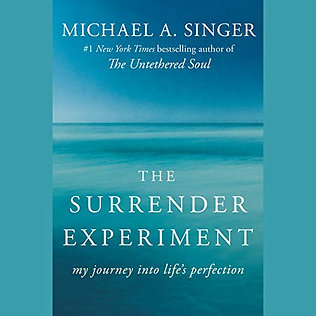 The Surrender Experiment: My Journey into Life's Perfection  Audible Audiobook –