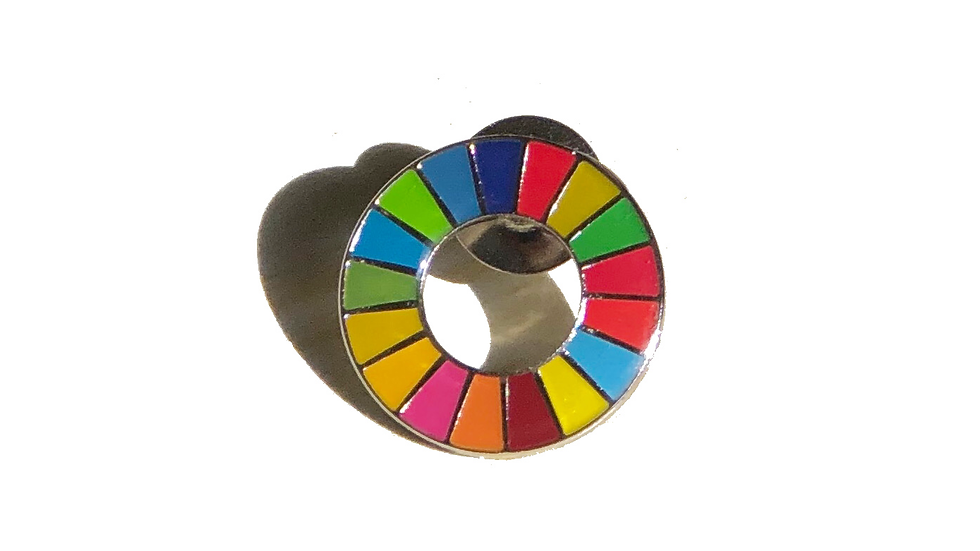 SDG Lapel Pin