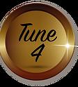 1 Year Tune-up Logo