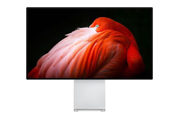 pro-display-gallery1-201909.jpeg