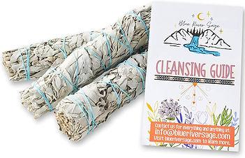 cleansing guide.jpg