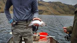 QUITO FISHING