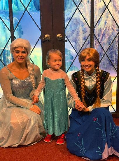 Elsa inspired costume