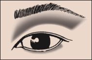 Asian Slight Fold #1 Eye Eyeshadow 101 Makeup Blog