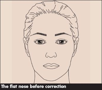 The Flat Nose Contouring Makeup Blog