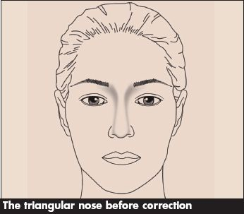 The Triangular Nose Contouring Makeup Blog