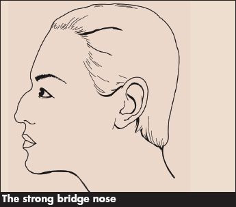 The Strong Bridge Nose Contouring Makeup Blog