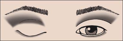 Eyeshadow Look Example Eyeshadow 101 Makeup Blog Fashion Glamour