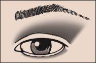 Slight Fold Eyeshadow 101 Makeup Blog