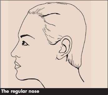The Regular Nose Contouring Makeup Blog