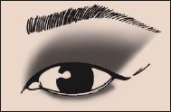 Asian Heavy Fold Eye Eyeshadow 101 Makeup Blog