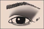 Heavy Fold Eye Eyeshadow 101 Makeup Blog