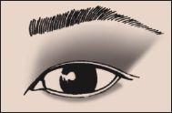 Asian Slight Fold #2 Eye Eyeshadow 101 Makeup Blog