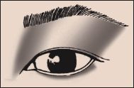 Asian Slight Fold #3 Eye Eyeshadow 101 Makeup Blog
