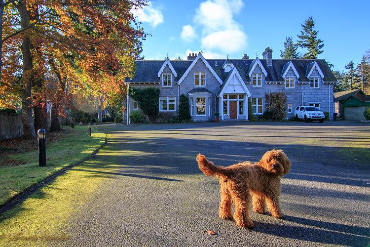 autumn teddy 05.11.17 - 38 (1).jpg