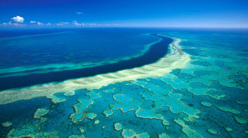 GREAT BARRIER REEF CASE