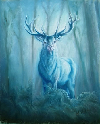 Winter Stag 1