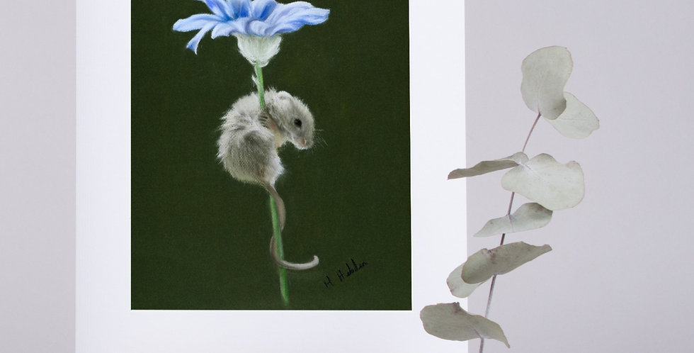 Mounted Fine Art Prints, A Mischief Of Mice, The Animal Instincts Collection