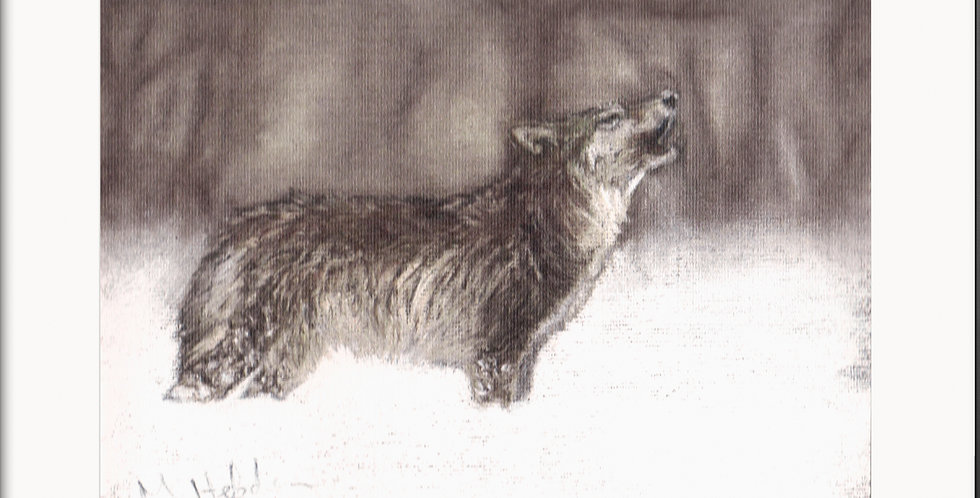 Mounted Fine Art Prints, The Wolf Pack, The Animal Instincts Collection