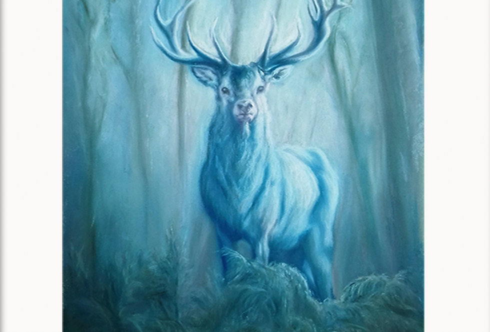 Mounted Fine Art Prints, Winter Magic, The Animal Instincts Collec