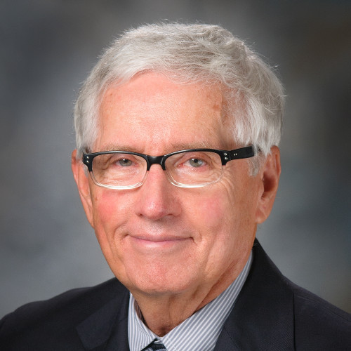 Dr. Robert Massey PHD, NEA-BC: Chief Academic Consultant