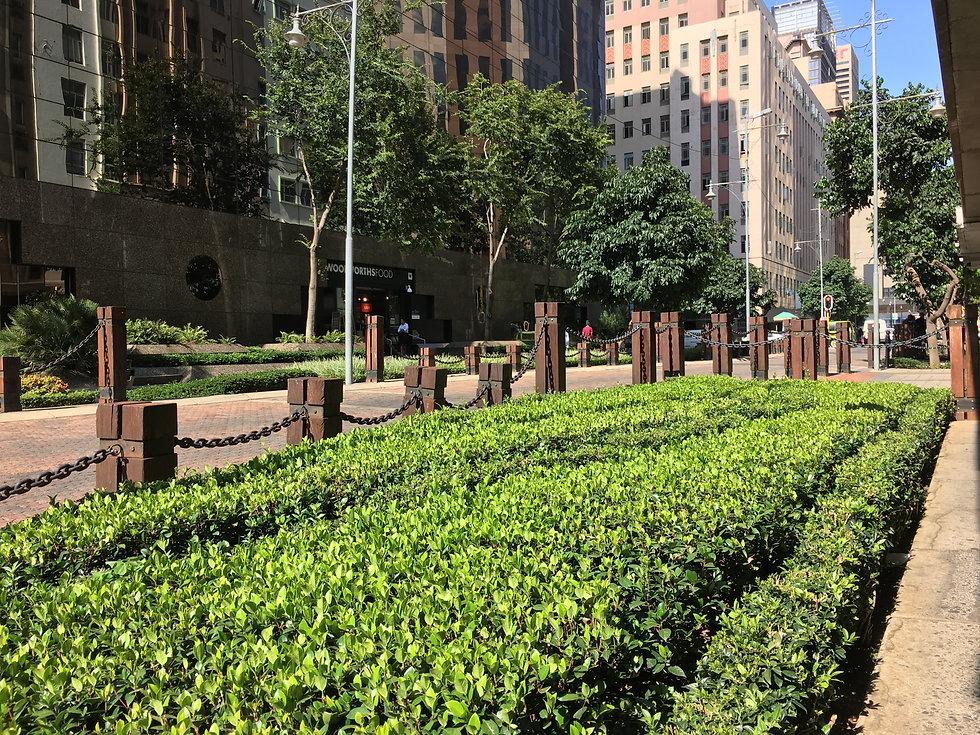 Landscaped gardens of main street